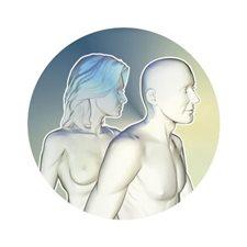 ภาพแสดงร่างกายของผู้หญิงและผู้ชาย